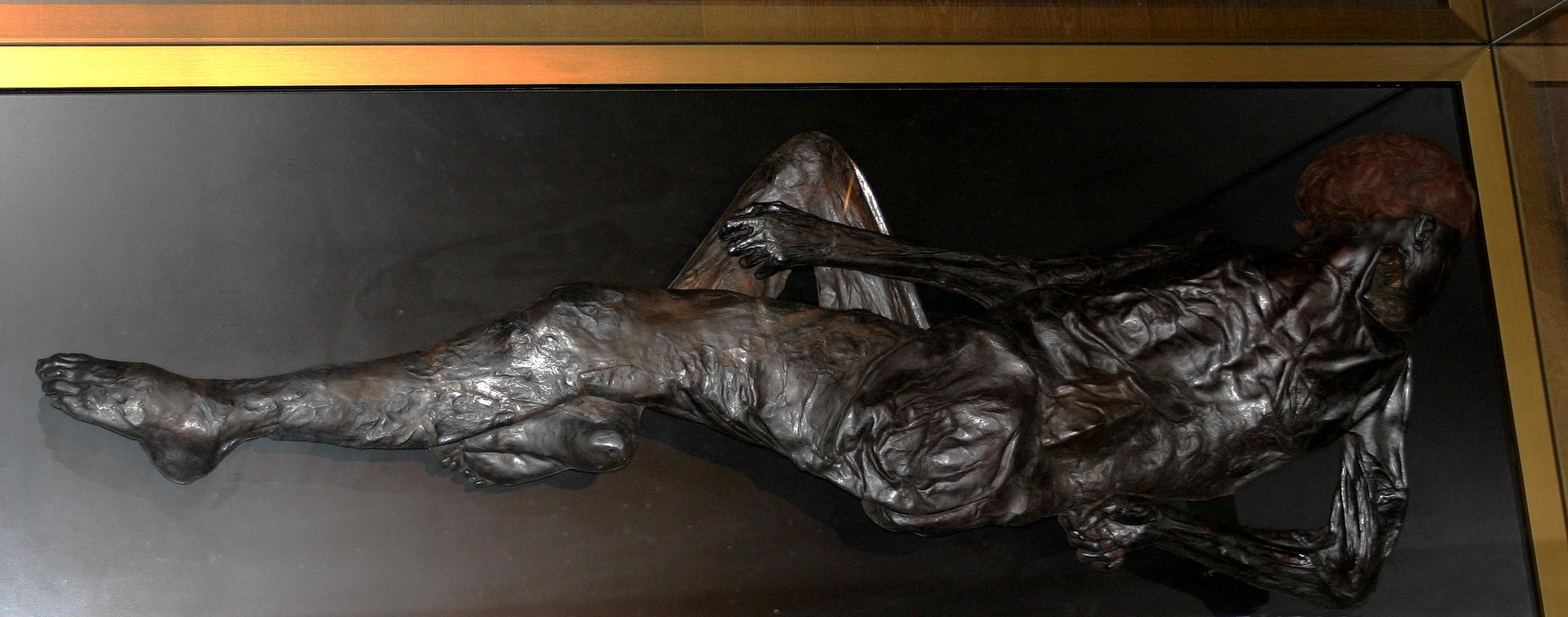 tollund man radiocarbon dating When scientists examined the body of the tollund man, they found detailed evidence of early iron-age life radiocarbon dating determined that the man died between 375-210 bc at.